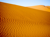 Sand Dune at Desert in Erg Chebbi, Morocco Photographic Print by David H. Wells