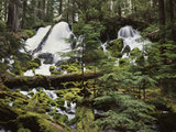 USA, Waterfall in Pacific Northwest Photographic Print by Christopher Talbot Frank