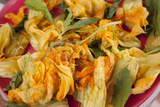 Mexico, Oaxaca, Squash Blossom Flowers Photographic Print by John & Lisa Merrill