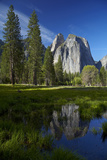 Cathedral Rocks Reflected in a Pond and Deer, Yosemite NP, California Photographic Print by David Wall