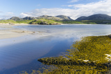 Isle of Lewis, the Uig Bay (Traigh Uuige) with Bladder Wrack. Scotland Photographic Print by Martin Zwick