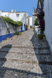 Europe, Portugal, Obidos, Cobblestone Street Photographic Print by Lisa S. Engelbrecht
