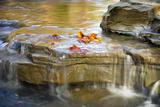 Indiana. Cataract Falls SNA, Rocks at Lower Cataract Waterfall Photographic Print by Rona Schwarz