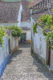 Europe, Portugal, Obidos, Cobblestone Steps Photographic Print by Lisa S. Engelbrecht