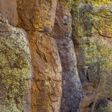 USA, Arizona, Chiricahua National Monument. Close-up of Cliff Face Photographic Print by Don Paulson