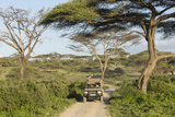 Landscape of the African Savanna with Safari Vehicle, Tanzania Photo by James Heupel