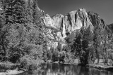 California, Yosemite NP. Yosemite Falls Reflects in the Merced River Photographic Print by Dennis Flaherty