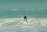 Falkland Islands, East Falkland. Gentoo Penguin Leaping in Surf Photographic Print by Cathy & Gordon Illg