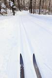 Cross Country Skis, Notchview Reservation, Windsor, Massachusetts Reproduction photographique par Jerry & Marcy Monkman