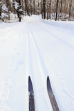 Cross Country Skis, Notchview Reservation, Windsor, Massachusetts Photographic Print by Jerry & Marcy Monkman