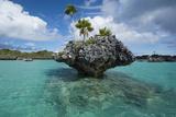 Fiji, Southern Lau Group, Island of Fulanga. Mushroom Islets Formation Photographic Print by Cindy Miller Hopkins