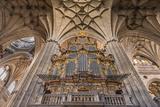 Europe, Spain, Salamanca, Cathedral Organ Fotoprint van Lisa S. Engelbrecht