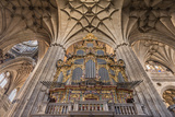 Europe, Spain, Salamanca, Cathedral Organ Photographic Print by Lisa S. Engelbrecht