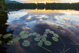 Water Lilies and Cloud Reflection on Lang Pond, Northern Forest, Maine Photographic Print by Jerry & Marcy Monkman
