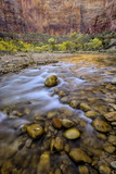 USA, Utah, Zion National Park. Stream in Autumn Scenic Photographic Print by Jay O'brien
