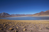 In the Altiplano of the Antofagasta Region of Chile, Is Miniques Lake Photographic Print by Mallorie Ostrowitz