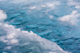 USA, Alaska, Glacier Bay National Park. Close-up of Blue Ice Photographic Print by Don Paulson