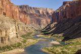 Anasazi Ruins. Nankoweap Granaries. Grand Canyon. Arizona. USA Photographic Print by Tom Norring