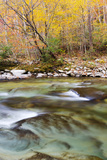 Tennessee, Great Smoky Mountains National Park, Little River Photographic Print by Jamie & Judy Wild