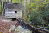 Tennessee, Great Smoky Mountains NP, Tub Mill and Millrace in a Forest Photographic Print by Jamie & Judy Wild