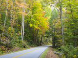 Tennessee, Great Smoky Mountains NP, View Along Little River Road Photographic Print by Jamie & Judy Wild