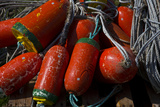 USA, Oregon, Garibaldi. Red and Green Crab Pot Buoys and Ropes Fotografisk trykk av Jean Carter