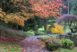 Bloedel Reserve. Pathway Through Japanese Gardens in Fall Color Photographic Print by Trish Drury