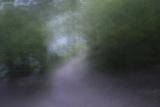 USA, Alaska, Abstract Pathway Photographic Print by Savanah Stewart