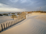 USA, South Carolina, Huntington Beach State Park Photographic Print by Zandria Muench Beraldo