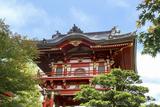 Japanese Tea Garden, Golden Gate Park, San Francisco, California Photographic Print by Susan Pease