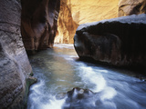 USA, Utah, View of Virgin River at Zion National Park Photographic Print by Zandria Muench Beraldo