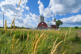 Eau Claire, Wisconsin, Farm and Red Barn in Picturesque Farming Scene Fotodruck von Bill Bachmann