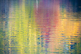 Fall Color Trees Reflected in Rippled Water Photographic Print by Trish Drury