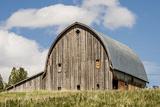 Idaho, Columbia River Basin, Camas Prairie, Old Barn Fotografisk tryk af Alison Jones