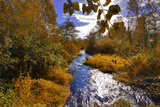 USA, Oregon. Scenic of Dieckman Creek Photographic Print by Steve Terrill