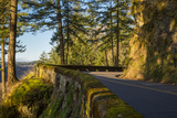 Columbia River Scenic Highway, Cascade Mountains, Oregon Photographic Print by Brian Jannsen