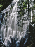 USA, Oregon, Mt. Hood Wilderness. Ramona Falls Landscape Photographic Print by Steve Terrill