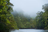 Tiputini River Scenic, Yasuni NP, Amazon Rainforest, Ecuador Photographic Print by Pete Oxford