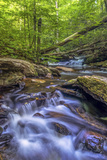 Pennsylvania, Benton, Ricketts Glen State Park. Kitchen Creek Cascade Photographic Print by Jay O'brien