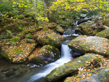 Tennessee, Great Smoky Mountains NP, Roaring Fork River Photographic Print by Jamie & Judy Wild