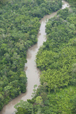 Tiputini River and Rainforest, Yasuni NP, Amazon Rainforest, Ecuador Photographic Print by Pete Oxford