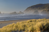 Evening Sunlight over the Beach and Coastline at Cannon Beach, Oregon Photographic Print by Brian Jannsen
