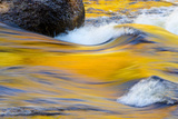 Fall Colors Along the Swift River in New Hampshire's White Mountain NF Photographic Print by Jerry & Marcy Monkman