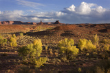 Valley of the Gods, Utah, USA Photographic Print by John Ford