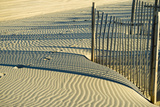 North Carolina. Dune Fence, Light, Shadow and Ripples in the Sand Photographic Print by Rona Schwarz