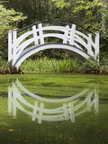 South Carolina, Charleston, Magnolia Plantation. Arching Bridge Photographic Print by Don Paulson