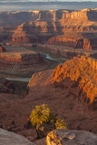 USA, Utah, Dead Horse Point State Park. Sunrise on Colorado River Photographic Print by Cathy & Gordon Illg