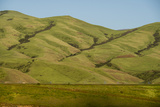 Idaho, Hillside with Small Creeks That Flow into the Salmon River Photographic Print by Alison Jones