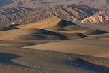 Undulating Sand Dunes of Death Valley in Golden Light Photographic Print by Sheila Haddad