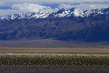 Death Valley and Grapevine Mountains, Mojave Desert, California Photographic Print by David Wall